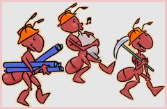 Der Kampf gegen die Ameisen geht weiter