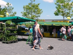 Sommerfest auf dem Wochenmarkt