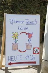Pflanzen-text2